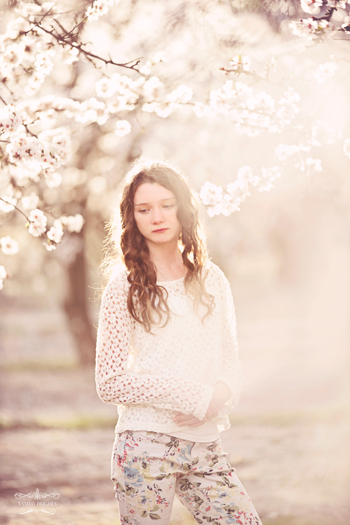 2014-portrait-almond-blossoms
