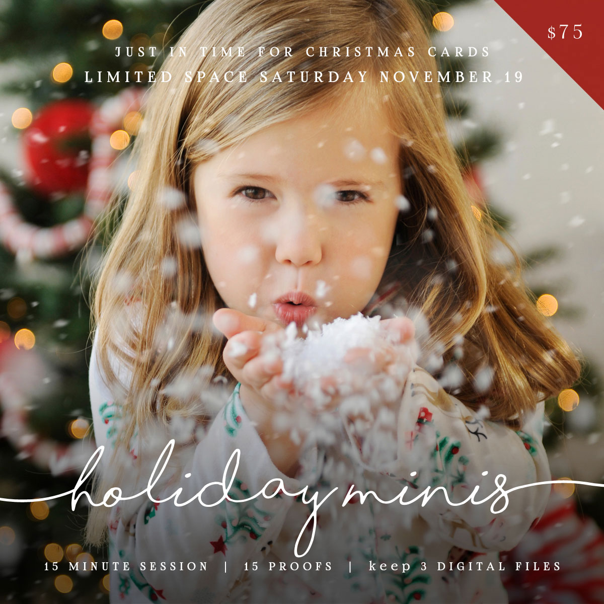 Holiday Mini Sessions ~ added date: November 19th