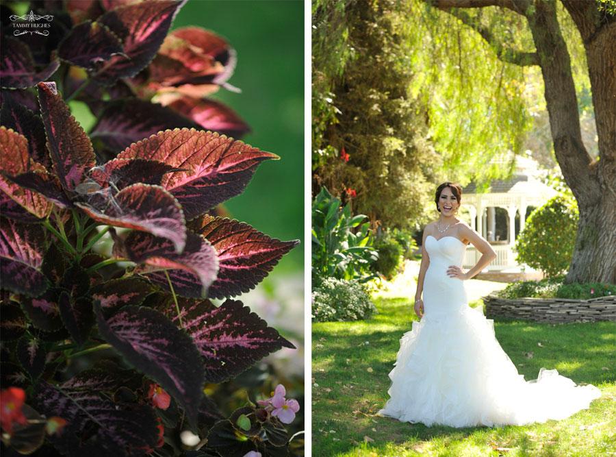 Tammy Hughes Modesto Photographer Vintage Gardens