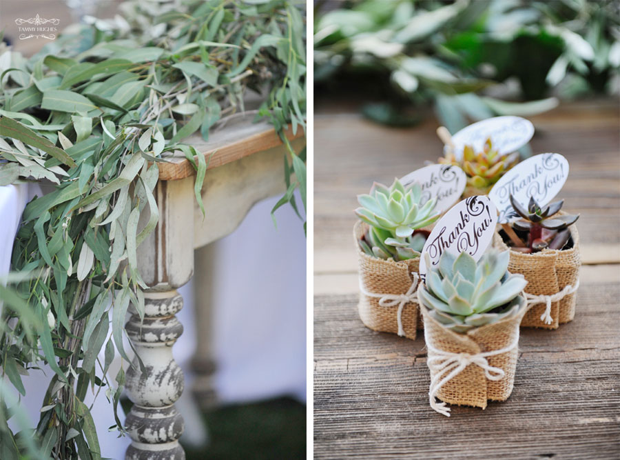Tammy Hughes Modesto Wedding Photographer Pageo Lavender Farm