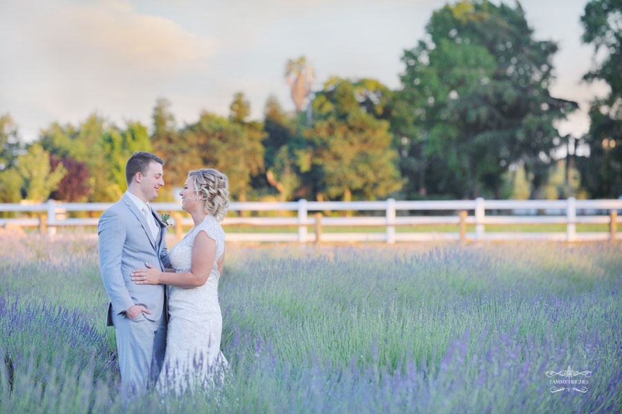 Tammy Hughes Modesto Wedding Photographer Pageo Lavender Farm